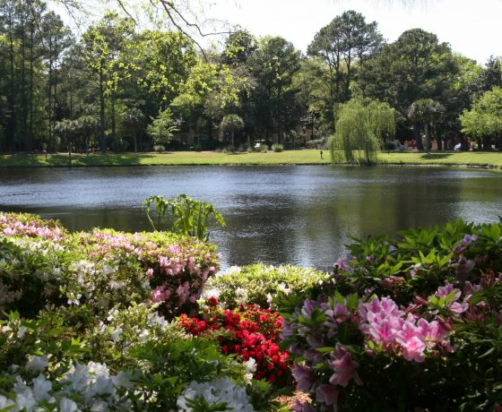 Reviews & Ratings - Hilton Head Island Beach & Tennis Resort - one of the best tennis resorts for your tennis holidays in (USA)